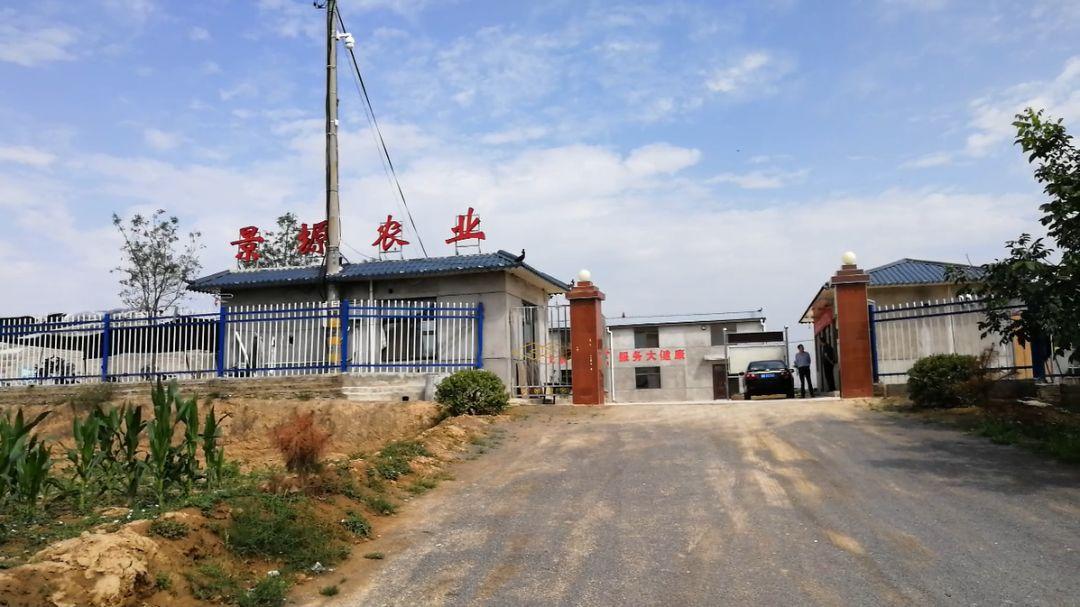 秦艾产业引领孙塬镇贺咀村群众走上致富路